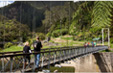 Bridge - Karangahake Gorge