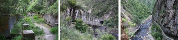 Tramps and walks in the Karangahake