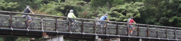 Cycling a bridge on the Hauraki Rail Trail