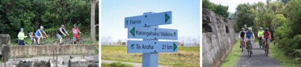 Cycling the Hauraki Rail Trail