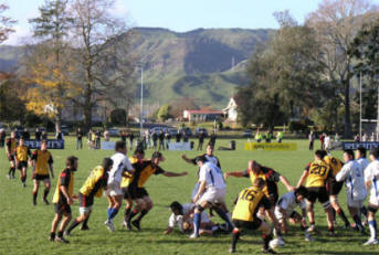Rugby at the Paeroa Domain