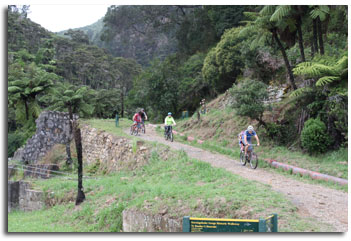 Cyclists at Karangahake